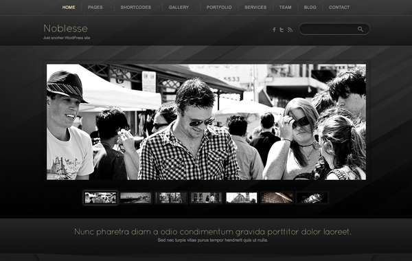 noblesse wordpress theme